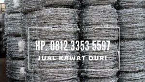 Jual Kawat Duri, Kawat Duri Pagar, Kawat Berduri Untuk Pagar Rumah, Harga Kawat Duri Silet, Harga Kawat Berduri Untuk Pagar, Harga Kawat Berduri Per Meter, Harga Kawat Pagar Berduri, Pagar Duri, Harga Pagar Kawat Duri Per Meter, Jual Kawat Duri Jakarta