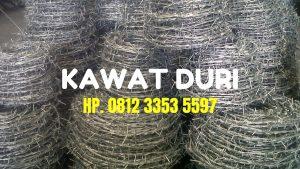 Kawat Duri, Harga Kawat Duri, Kawat Berduri, Pagar Kawat Berduri, Harga Kawat Berduri, Kawat Duri Silet, Harga Kawat Duri Per Meter, Pagar Kawat Duri, Jual Kawat Duri, Kawat Duri Pagar